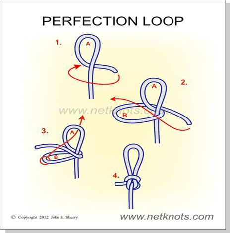 How to tie a Perfection Loop Knot