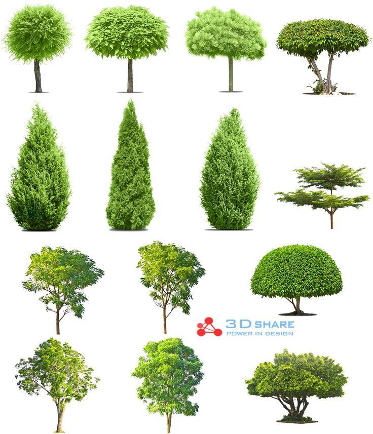 [photoshop][tree]