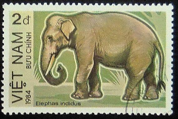 Indischer Elefant Elephas Indicus Vietnam 1984 - gerahmt Briefmarke Kunst 11571