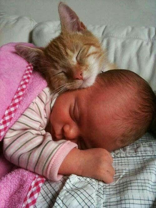 Sooo cute....