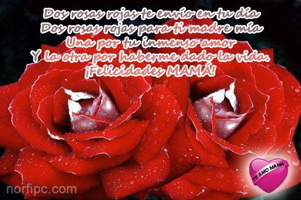 Dos rosas rojas te envío en tu día. Dos rosas rojas para ti madre mía. Una por tu inmenso amor y la otra por haberme dado la vida. ¡Felicidades MAMÁ!