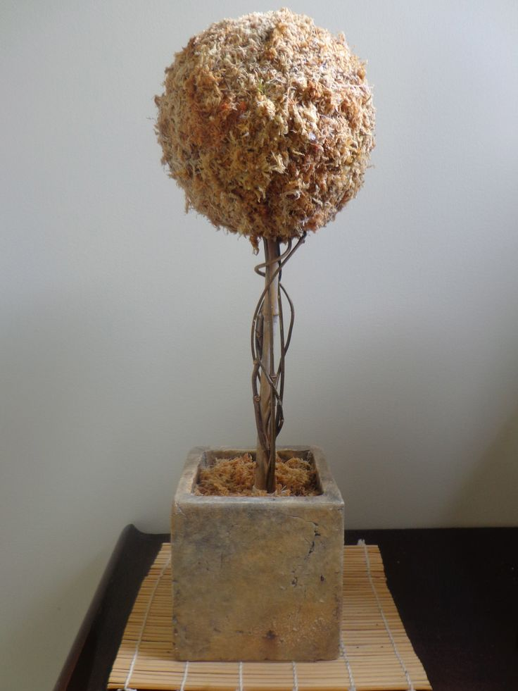 Saw something like this online and wanted to have a go at making.  Polystyrene ball with spagnum moss glued on - quite messy to do!  Ended up also binding with transparent nylon thread to hold it all together.  Found an old bamboo stake in garage which used to hold it up and added some dried star jasmine vines around bamboo.