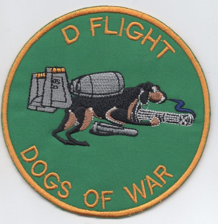 US Air Force 25th Fighter Sqdn Assam Draggins patch, A-10 Thunderbolt , D-Flight