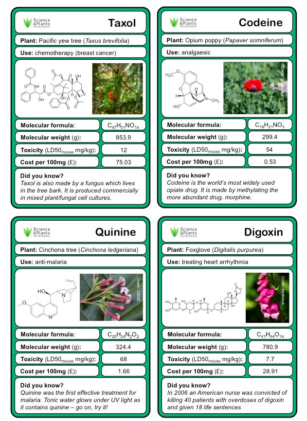 The 23 best edexcel science gcse revision images on pinterest superb and fun card game on medicines and drugs from plants by sapsnews publicscrutiny Gallery
