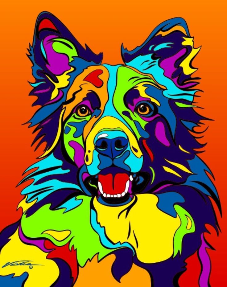Multi-Color Border Collie Matted Prints & Canvas Giclées. Hand painted and printed in USA by the artist Michael Vistia. Dog Breed: The Border Collie is a working and herding dog breed developed in the