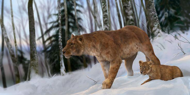 Cave Lion (Panthera leo spelaea) by Lucas Lima on ArtStation