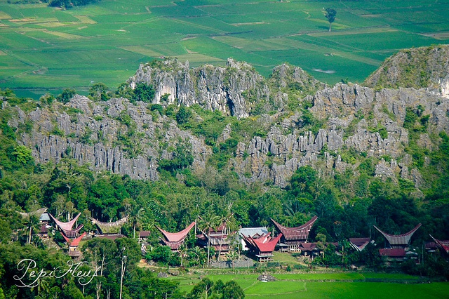 Toraja house, in Sulawesi, Indonesia