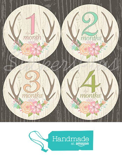 Baby Month Stickers Monthly Baby Girl Milestone Stickers Deer Antler Woodland Floral Flowers from Angies StickersPlus http://www.amazon.com/dp/B019ENR3BM/ref=hnd_sw_r_pi_dp_OMvnxb0M7QCZ8 #handmadeatamazon