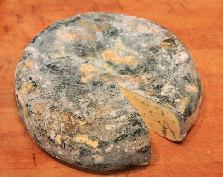 Remember, you need to prepare the freeze dried Penicillium Roqueforti 24 hours in advance of making the cheese. I always forget.