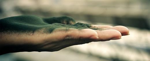 Gyógyulj gombákkal! : A spirulina kedvező hatásai az emberi szervezetre!...