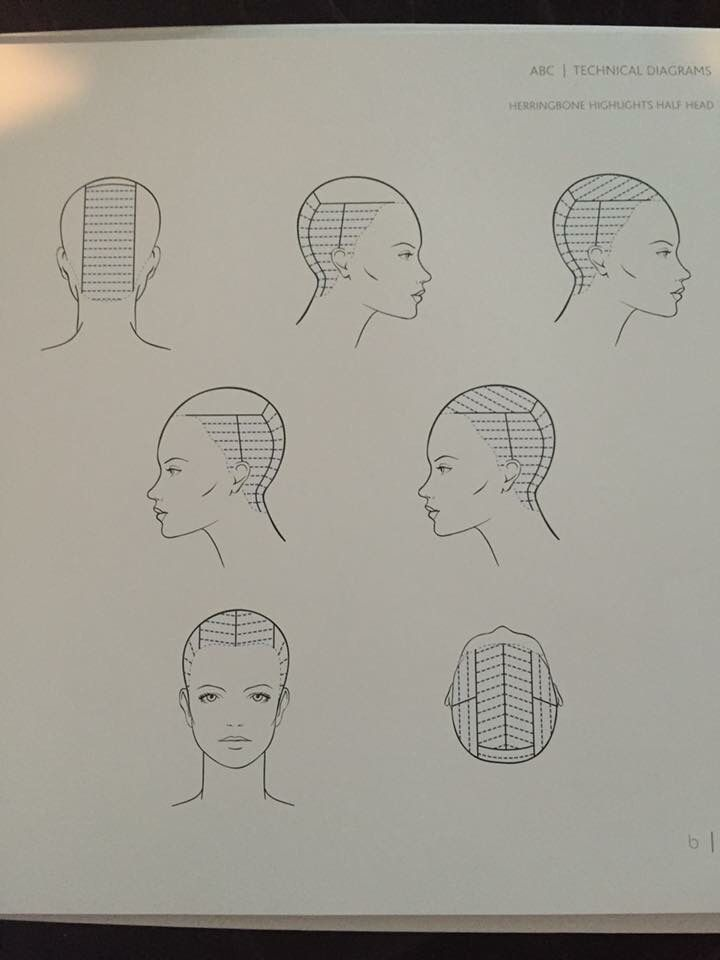 Image result for hair sectioning pattern diagram for multi-colored streaks
