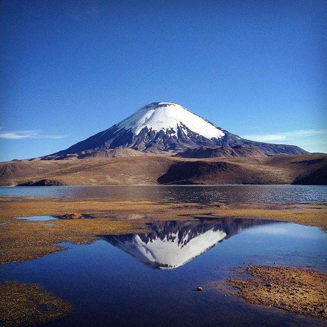 Happiest of birthdays to my dad. I spent the day adventuring in the mountains and taking pictures in his honor. Beyond lucky to call such a strong, compassionate, creative, genuine man my father. You inspire me every day. Love you pops.  Parinacota (20,827 ft) seen from Lago Chungara (14,820 ft) on the Bolivian/Chilean border.