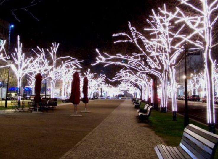 Christmas Tree Lots Sacramento