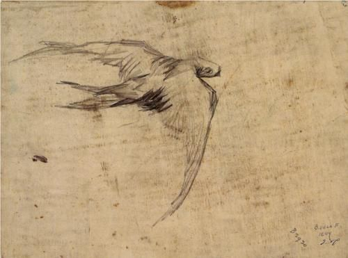 Swift | Vincent van Gogh | 1887