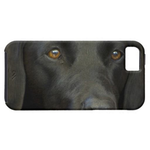 >>>Best          Svart Labrador hund iPhone 5 Covers           Svart Labrador hund iPhone 5 Covers we are given they also recommend where is the best to buyDeals          Svart Labrador hund iPhone 5 Covers Review from Associated Store with this Deal...Cleck Hot Deals >>> http://www.zazzle.com/svart_labrador_hund_iphone_5_covers-179556849682244695?rf=238627982471231924&zbar=1&tc=terrest