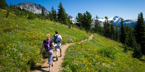 summer hiking in Whistler, British Columbia, Canada