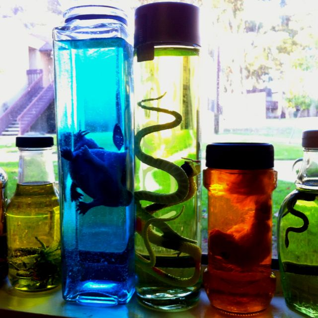 Easy decorations for a Mad Scientist Birthday party: recycled glass jars, water, food coloring and dollar store toys