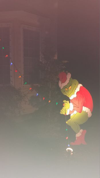 Picture of The Grinch stole my Christmas lights
