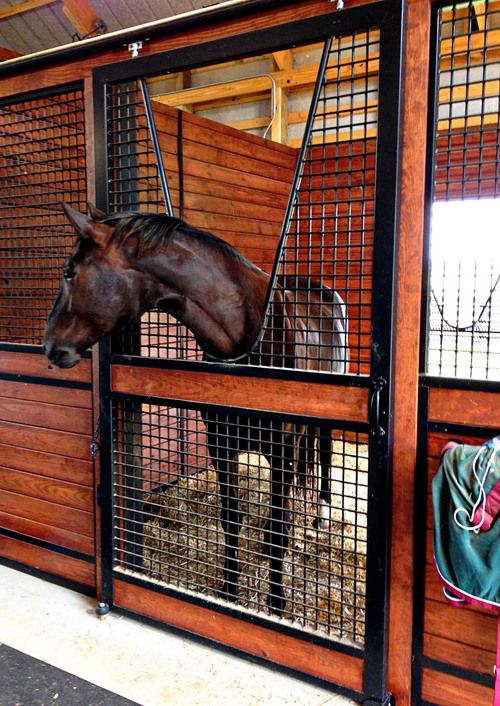 178 best fancy horse barns images on pinterest