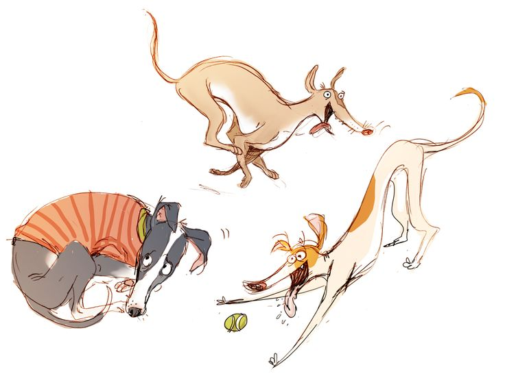 Character Design Dog : Best greyhound whippet digital art clip images on