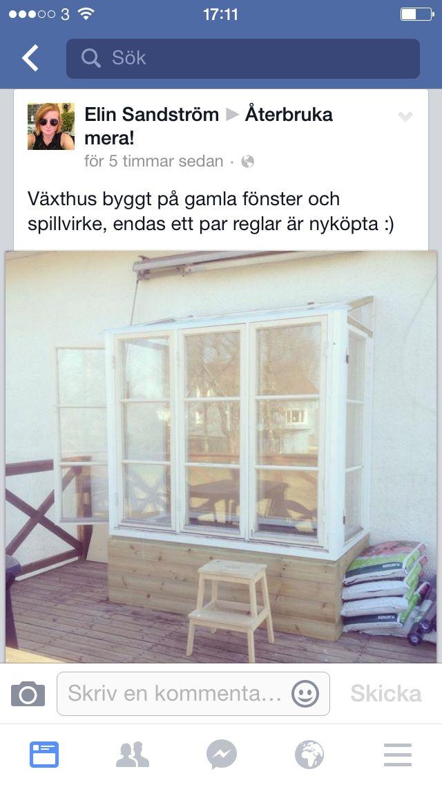 Växthus byggt av gamla fönster.