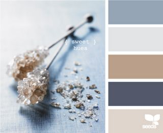 """Edible - """"sweet hues"""".  Love love love colonial blue and mushroom.  My family room.  Almost elicits a physical reaction from me, I like it so much."""