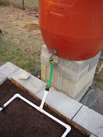 "The second drip irrigation barrel was easier and less expensive to make. I drilled a 7/8"" hole near the bottom and forced an old ¾"" hose b..."