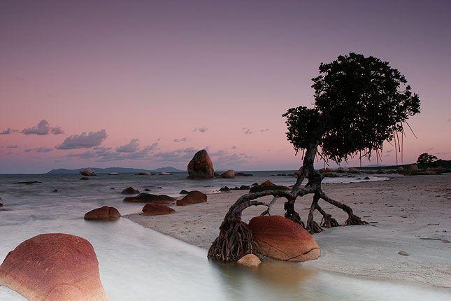 ▲                                                                 Cape York Peninsula Landscape                                                                                                                                                                                                                                                             ▲ Mountain World
