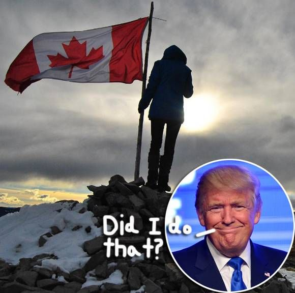 Canada's Immigration Website Crashes Amid Donald Trump's Shocking Presidential Victory!
