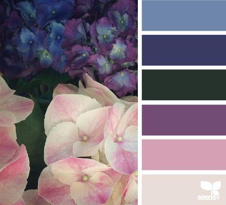 Hydrangea Hues - http://design-seeds.com/index.php/home/entry/hydrangea-hues3