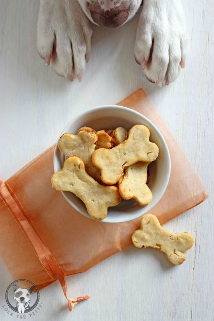 ginger and apple homemade dog treats
