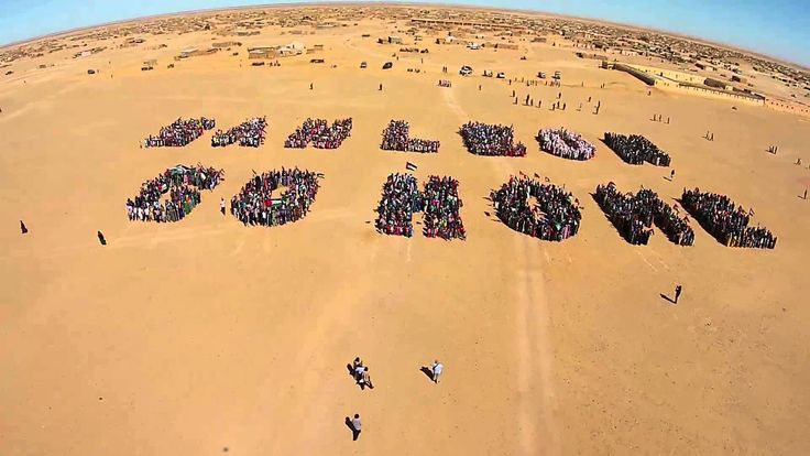 Protest against San Leon Energy drilling in occupied Western Sahara (fly...