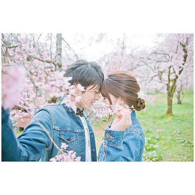 【_misaaa.n_】さんのInstagramをピンしています。 《wedding photo ⋆。˚✩ 2016年の春は最高に 桜を満喫出来ました🌸🌸🌸💕 photo by @carryworld2403 様 . 写真にはうつってないけど、 この日もミニドレスで💕💕💕 載せたい写真がたーーーっくさんあるくらい この日ほんっと楽しくて笑顔の写真ばっかり💓! . ずっと大好きだった写真を撮ってる人に縁あって ウェディングフォトまで撮ってもらって 満足すぎました~☺️✨✨ . . #ym_couplephoto . #marryxoxo #marry #エンゲージメントフォト  #ウェディングフォト #weddingphotography #wedding  #プレ花嫁 #2016秋婚  #卒花嫁#カップルポートレート  #カップルフォト #カップルコーデ #リンクコーデ  #ウェディングニュース #前撮り #春 #桜》