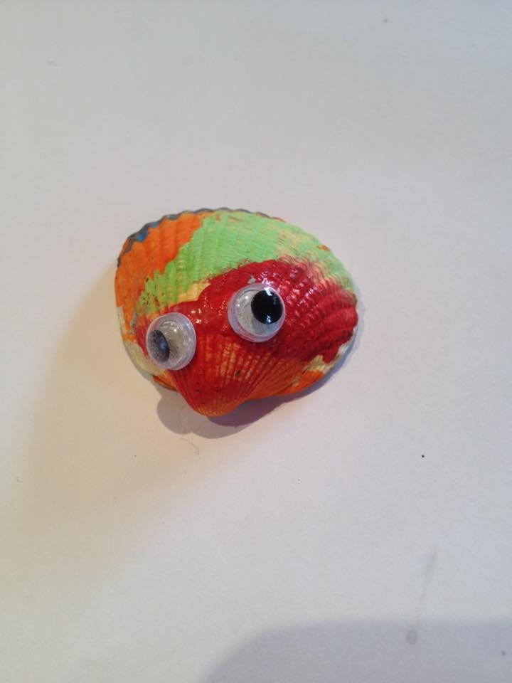 Activity 52. A painted shell with eyes- it must be.... a ...painted shell with eyes!