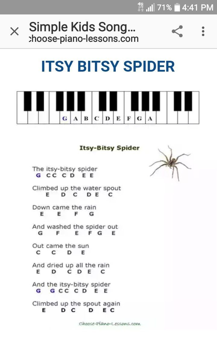 Itsy Bitsy Spider Nursery Rhymes Piano Sheet Music Pianomusic