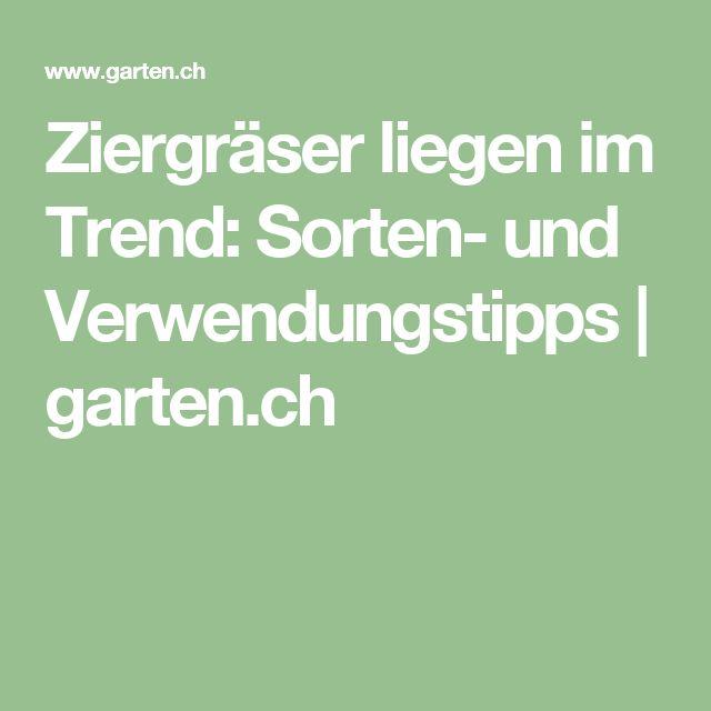 Ziergräser liegen im Trend: Sorten- und Verwendungstipps | garten.ch
