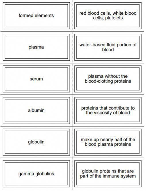 flash nursing terminology medical certificate programs flashcards anatomy greatnursecareers ampeduplearning honors