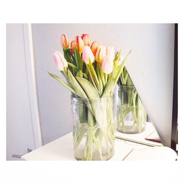Eftermiddagssol och tulpaner, ett tecken på att vårvintern är påväg