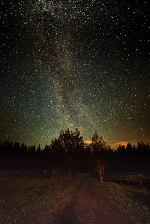 Perhaps they are not stars, but openings in heaven where the love of our lost ones pours through and shines down upon us...