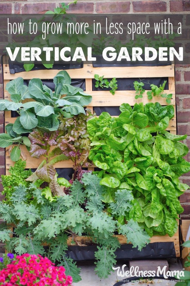 Walled Kitchen Gardens 17 Best Ideas About Walled Garden On Pinterest Garden Privacy