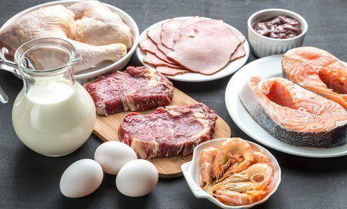 Nahrungsmittel mit Tryptophan zum Abnehmen