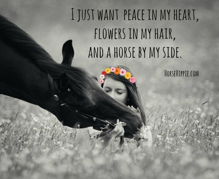 I just want peace in my heart.