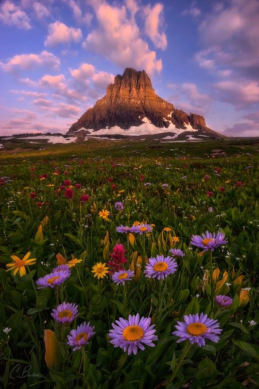 woodendreams:  Logan Pass, Glacier National Park, Montana, US (by Candace Bartlett / 500px)
