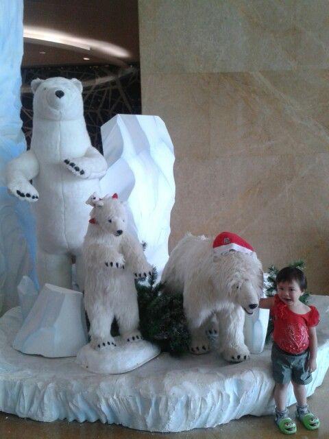 Poto dengan beruang kutub @Lotte van den Hout avenue