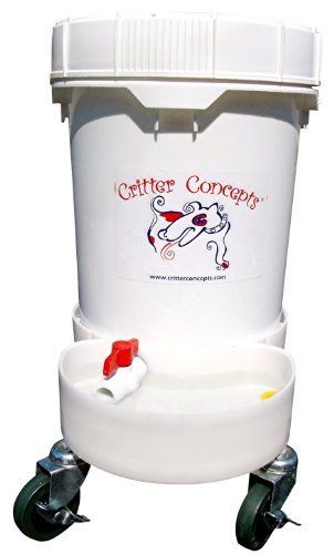 1000 Ideas About Dog Water Bowls On Pinterest Whippet
