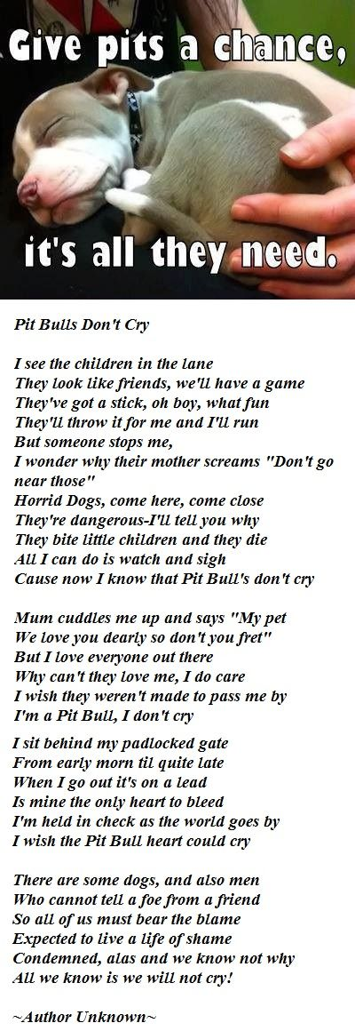 "Pit Bulls Don't Cry Poem :'(...not my normal ""animals bring smiles"" pin, but just as important. bring the human to justice; don't condemn the breed."
