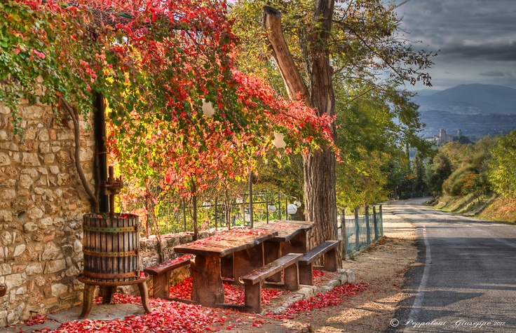 Autumn in Umbria - Perfect time of the year to visit our wonderful region...