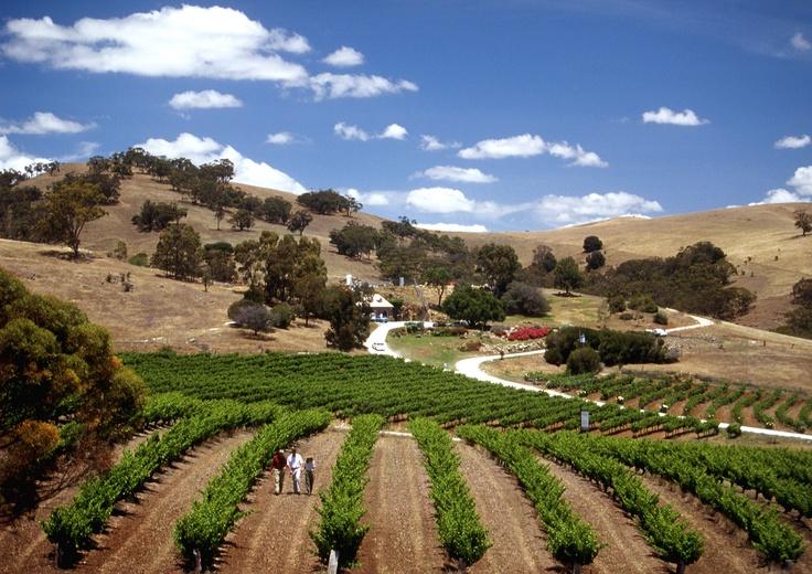 Barossa Valley, South Australia #wotahotel