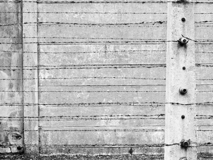 Auschwitz fence detail (by Maria Espasa)
