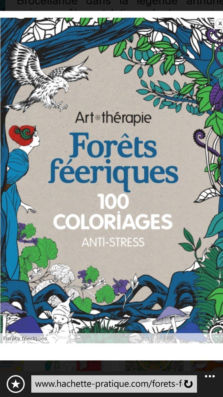 art thrapie 100 coloriage anti stress fort ferique hachettepratique arttherapie antistress